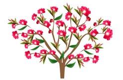 вал aple цветя иллюстрация вектора