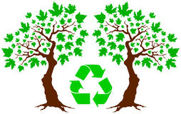 вал greenpeace Стоковое Фото