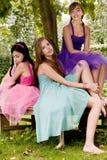 вал princesses Стоковые Фотографии RF