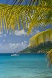 вал sailing ладони островов Стоковые Изображения RF