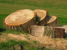 вал sawing диска Стоковые Фото