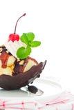 Ванильное мороженое Стоковые Изображения