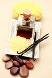 ваниль эфирного масла Стоковое Изображение