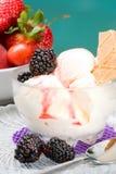 ваниль sundae ежевики Стоковое фото RF