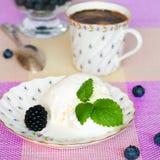 Ванильное мороженое Стоковые Изображения RF