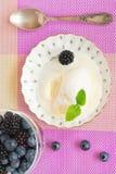 Ванильное мороженое Стоковое Фото