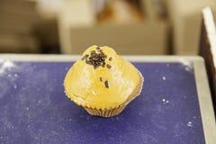 Ванильное пирожное шоколада Стоковые Изображения