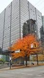 Ванкувер городской - падение стоковая фотография rf