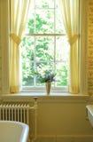 Ванная комната вазы цветка старомодная Стоковые Фотографии RF