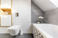 Ванная комната чердака с ванной Стоковая Фотография RF