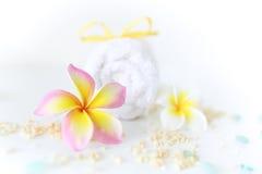 ванна вспомогательного оборудования миражирует полотенца спы установки Стоковое Изображение