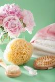 Ванна и курорт с цветками пиона чистят полотенца щеткой губки Стоковое Изображение RF
