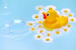 Ванна с пузырями мыла, уткой и стоцветом цветет для младенца или может быть для взрослого Стоковое фото RF