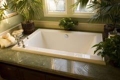 ванна 1863 Стоковые Фотографии RF