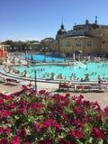 Ванны Будапешта Венгрии турецкие Стоковое Изображение