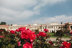 Варезе ОКТЯБРЬ 2018 ИТАЛИЯ - цветки против дворца Estense, или Palazzo Estense стоковое фото rf