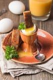 Вареные яйца и кудрявые здравицы Стоковое фото RF