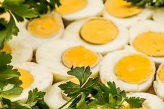 Вареные яйца отрезанные в halfs Стоковое Фото
