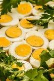 Вареные яйца отрезанные в halfs Стоковые Фото