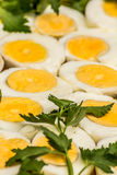 Вареные яйца отрезанные в halfs Стоковое Изображение