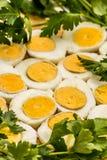 Вареные яйца отрезанные в halfs Стоковые Изображения RF