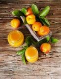 Варенье абрикоса в малом стекле раздражает с плодоовощами, селективным фокусом Стоковые Изображения RF