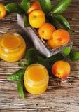 Варенье абрикоса в малом стекле раздражает с плодоовощами, селективным фокусом Стоковое фото RF