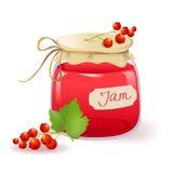 Варенье красной смородины Стоковые Фотографии RF