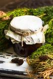 Варенье от конусов сосны Стоковые Изображения