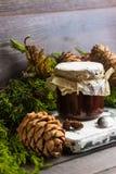 Варенье от конусов сосны Стоковая Фотография