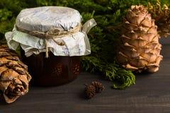 Варенье от конусов сосны Стоковая Фотография RF