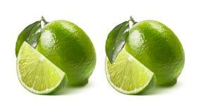 2 варианта известки изолированного на белой предпосылке Стоковое Изображение