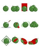 12 вариантов арбуза Стоковые Изображения RF
