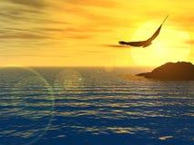 вариант орла стоковое изображение rf