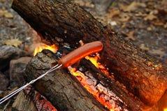 Варить горячую сосиску над лагерным костером Стоковая Фотография