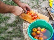 варить еду Стоковые Изображения