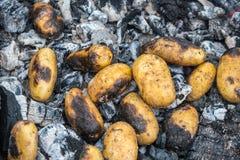 Варить картошки в огне Картошки брошенные в золы Стоковые Фото