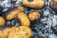 Варить картошки в огне Картошки брошенные в золы Стоковые Фотографии RF