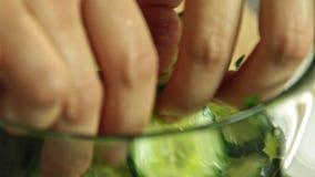 Варить рыб семг в кухне акции видеоматериалы