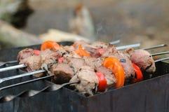 Варить kebab жаркого shish на углях Стоковое Изображение
