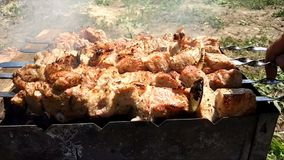Варить kebabs на протыкальниках над огнем в сельской местности в деревне Сырое мясо сварено на гриле угля Конец-вверх видеоматериал