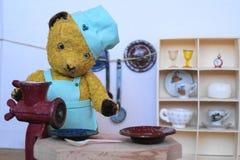 Варить Morulet медведя Стоковые Изображения