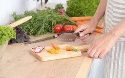 варящ вырезывание огурца съешьте женский портрет жизни кухни дома девушки подготовляя довольно усмехаться что-то стоя к детенышам Стоковая Фотография RF