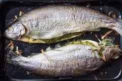 Варящ 2 рыб, радужная форель заполненная с зеленым соусом Стоковая Фотография RF