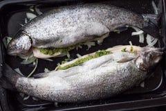 Варящ 2 рыб, радужной форели заполненной с зеленым соусом и ее Стоковое Изображение RF