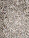 Ватка шерстей альпаки выдерживая в воде r стоковая фотография rf