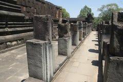 Ватт Angkor - стены руин виска Prohm животиков города кхмера Angkor Wat - заявите памятник стоковое изображение
