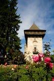 вахта башни городища старый Стоковые Изображения RF