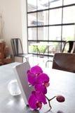 Ваша квартира потехи Стоковая Фотография RF