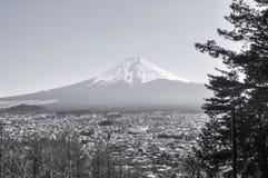 вашингтон взгляда mt Фудзи-Городской пейзаж-черный и белый Стоковое фото RF